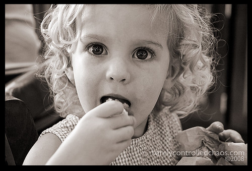 Yum! Pumpkin scones....
