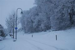 081217_Jonen-Schnee-im-Dezember-005