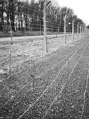 KZ-Gedenkstaette Buchenwald 03