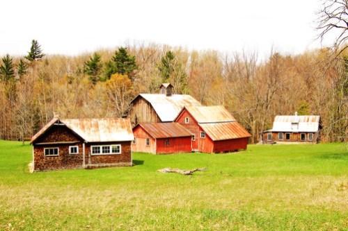 The Bufka Farm