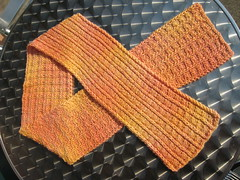 Scarf_2008Jul3_SailorsRib_peach