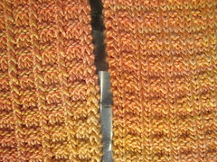 Scarf_2008Jul3_SailorsRib_peach_back