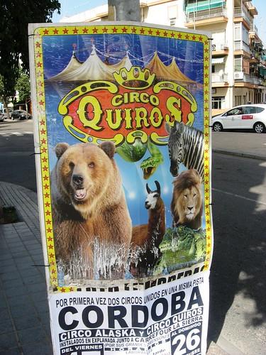 Circos crueles en Córdoba
