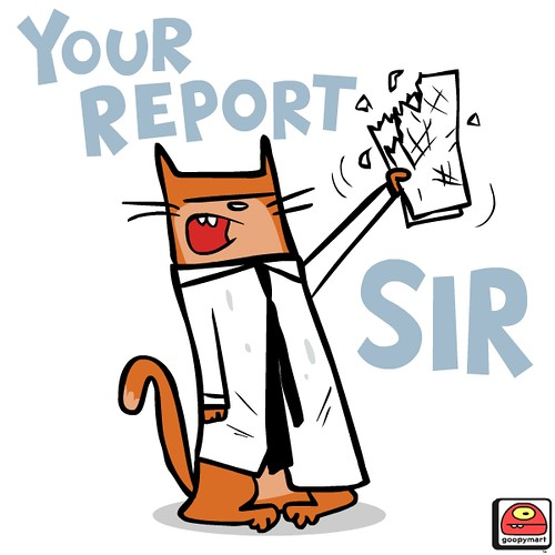 your report sir