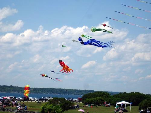 Kites at Brenton Park, Rhode Island