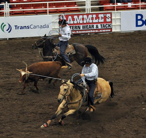 Rodeo Royal Calgary 2008 132