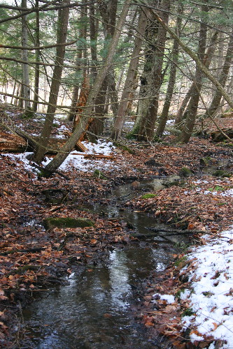 creek5