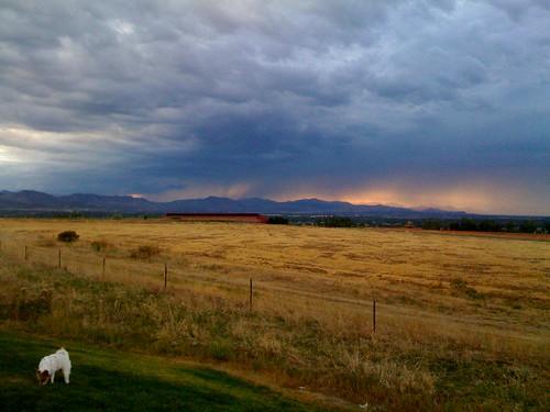 Rain on the Front Range with Brady