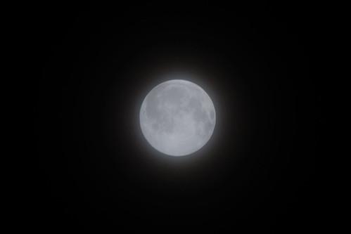 2008 Moon