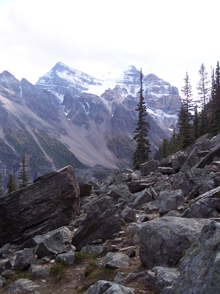 Way to the Teahouse, Banff National Park, Alberta, Canada