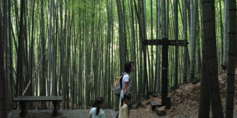 奮起湖:小孩走不得的木馬棧道/老街(4.1ys)