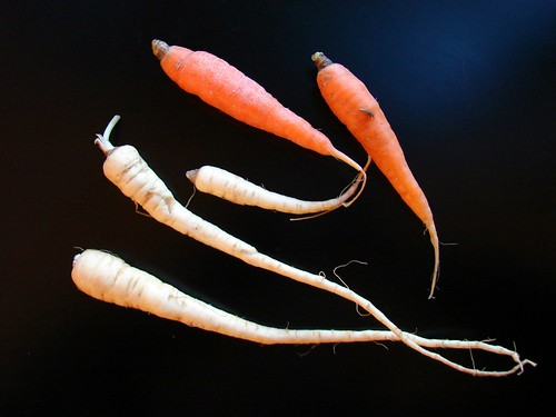 wee carrots and parsnips