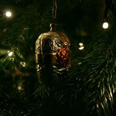 Weihnacht08 9_2008 12 21_7279