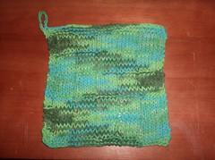 Grid Pattern Dishcloth