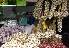 garlic garlands