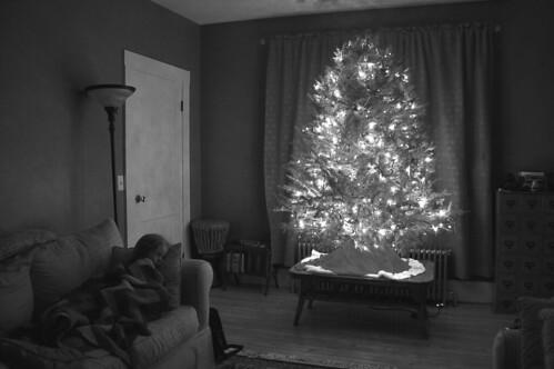 O tree