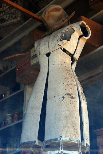 Bodie Dress Form