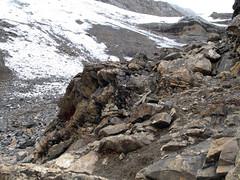 Rocas y nieve... lo único que se veia en el camino