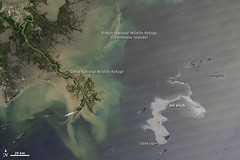 Oil Leak from Damaged Well in Gulf of Mexico A...