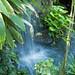Botanical Gardens and Zoo 043