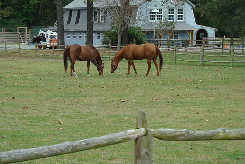 Gisselle and HUNT CLUB FARM