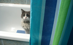 En la ducha xD