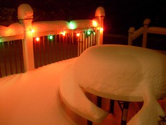 snowy9