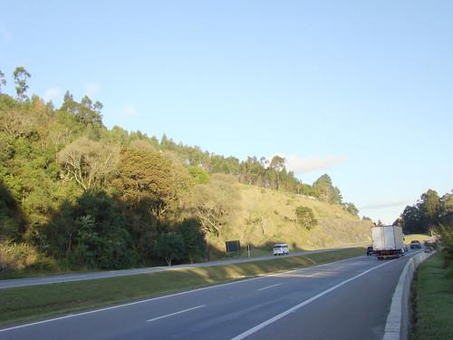Fisolosia de estrada (foto: Andre Kenji/cc)