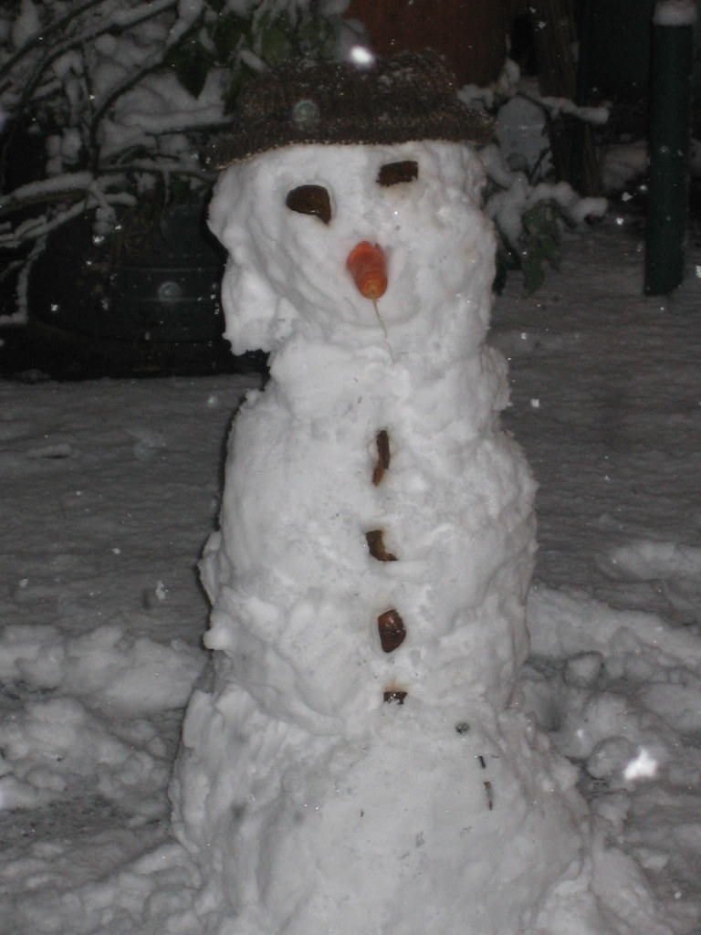 A Snowman made after the recent snowfall. Note the traditional carrot nose and the old dried fruit peel used for other features.