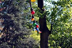 Light bulbs in trees 2