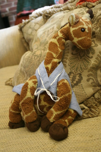 Sweater for Giraffe