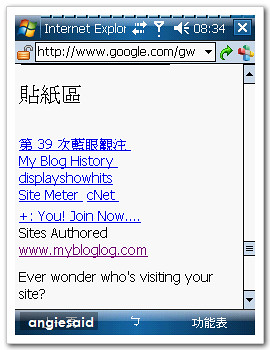 google-angie-02.jpg
