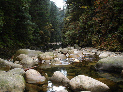 Lynn Canyon Park (North Vancouver)