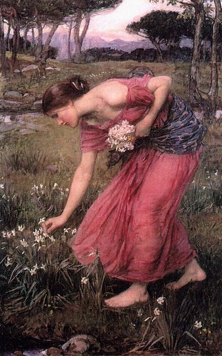waterhouse_narcissus by you.