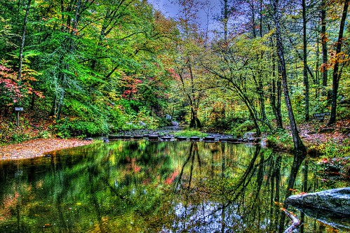 Natures Reflecting Pool