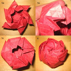 Hexagonale Rose Description 5a-6