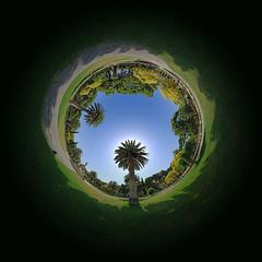 Inside Garden 360