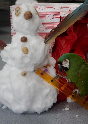 Everett builds a snowman