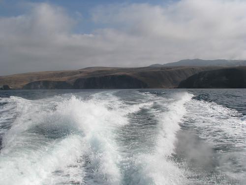 Santa Cruz 31