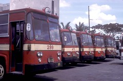 Philippine Rabbit buses (fleet Nos 299, 475, 8...