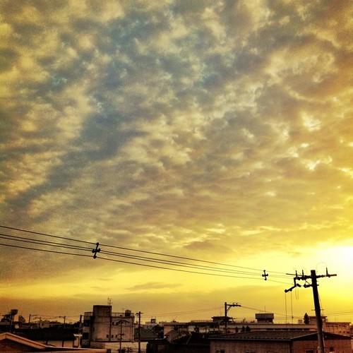 今日も一日、お疲れ様でした。#sunset
