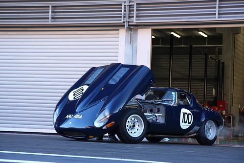 Jaguar Type E by Martin  Vincent.