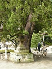 Kamakura, Engaku-ji