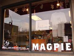 Magpie in Boston