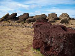 Die meisten Moai liegen umgestürzt da.