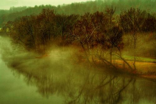 Mist along the Shore
