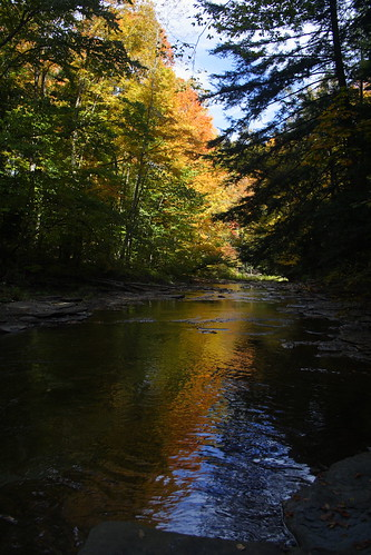 Chautauqua Creek - Autumn