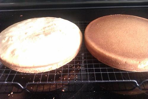 Vanilla cake layers