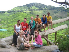 TJ, Jennie, Hugh, Debbie, Lisa, Adam, Georgina & Me over the Tea fields