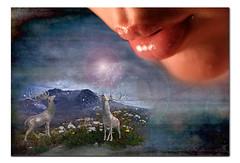 Gaia's Kiss